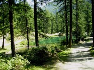 sul lago di Pellaud
