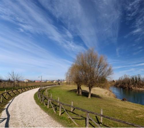 Cervarese Santa Croce - Bipedi e quadrupedi a passeggio