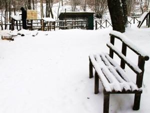 A sedervisi ci vuol coraggio e sangue freddo, freddissimo direi.