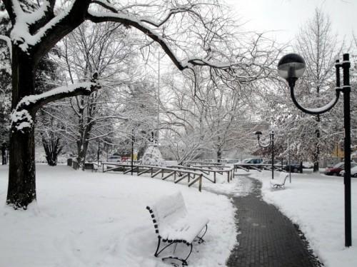 Casalpusterlengo - Nel parco di Piazza della Repubblica