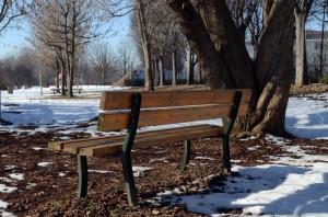 Nel Parco
