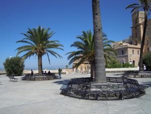 All'ombra delle palme