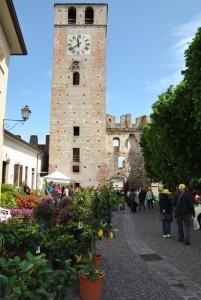 Borgo in Fiore