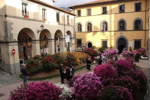 Borgo a Mozzano - Diavolo in fiore!