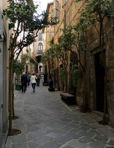 Orvieto - Vicolo alberato