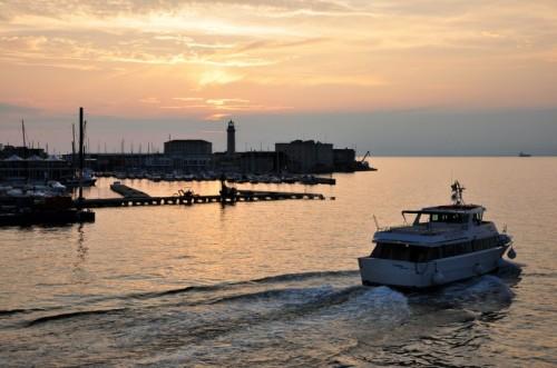 Trieste - Delfino Verde
