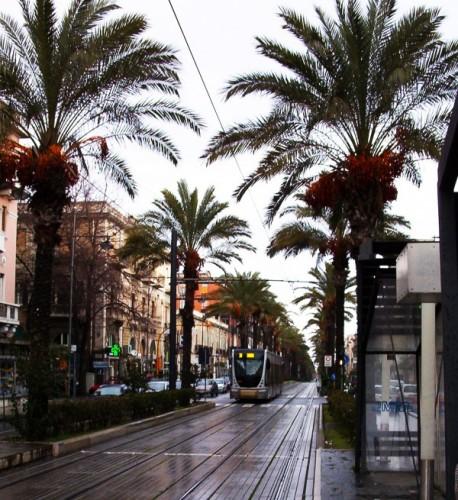 Messina - Per il museo
