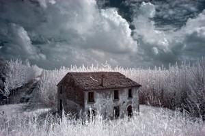 Infrared World_Rural Environment
