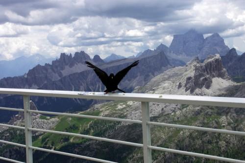 Cortina d'Ampezzo - Libero di volare sempre più in alto
