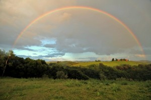 L'arcobaleno, porta del Paradiso…