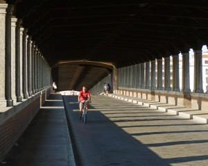 pedalando all'ombra