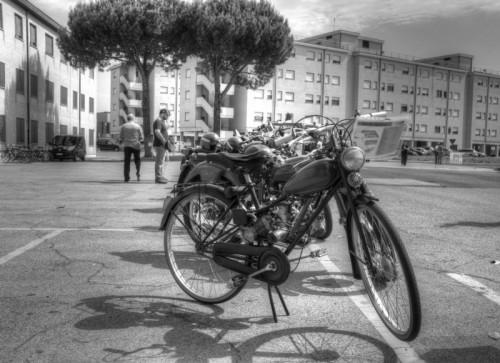 Roma - aquilotto
