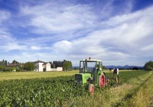 Il trattore verde