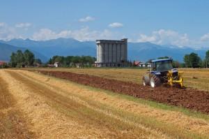 I silos del consorzio agrario