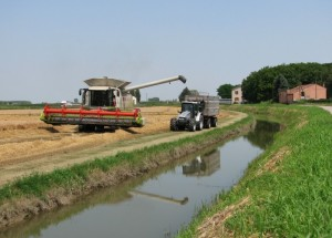 Riflessi agricoli