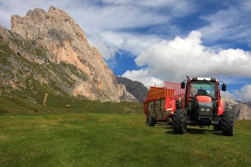Santa Cristina Valgardena - In montagna